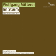 Wolfgang Mitterer - Im Sturm