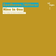 Wolfgang Mitterer - Nine In One